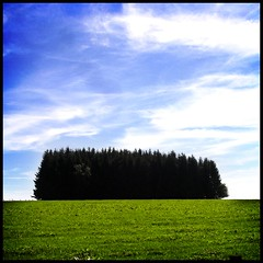 treeboy (kiplingflu) Tags: trees sky color colour green grass topv111 clouds landscape belgium forrest ardennen meadow belgi favme topf fv10 luxembourg vielsalm coleur