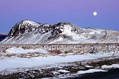 Mountain in Winter Moonlight