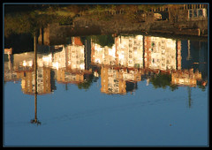Reflejos en el agua (Ins GFM) Tags: world blue reflection water azul canon reflections agua bilbao urbannature reflejo zb ifc bizkaia euskalherria ria reflejos canonpowershot i500 riadebilbao flickrpix fotosdearaia ibarrekofotoclub picswithframes inesg araiane