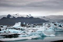 Jkulsrln Glacial Lake - Iceland ({ Planet Adventure }) Tags: favorite 20d ice gelo canon wonderful landscape ilovenature island eos iceland islandia nationalpark interestingness cool holidays flickr explorer deep ab glacier backpacking 100views stunning iwasthere 300views 200views iceberg incredible tagging canoneos icebergs allrightsreserved jokulsarlon havingfun glacial skaftafell inhospitable onflickr copyright visittheworld ilovethisplace skaftafellnationalpark travelphotos 200mostinteresting facinating verycool placesilove traveltheworld breiamerkurjkull travelphotographs canonphotography thecontinuum alwaysbecapturing worldtraveller planetadventure spectacularlandscapes lovephotography specland 123faves beautyissimple theworlthroughmyeyes 20060827 peopleseemtolike icelandiclandscape supperb flickriscool loveyourphotos theworldthroughmylenses greatcaptures shotingtheworld by{planetadventure} byalessandrobehling icanon icancanon canonrocks selftaughtphotographer phographyisart travellingisfun theglaciallakejkulsrln theglaciallakejokulsarlon lagodegelo largestglaciallakeiniceland 18km depthof200mts seconddeepestlakeiniceland breidamerkurjokullglacier laterallycool stunningscenery artlibre inhospitableplace icelandiclandscapeimage copyright20002006alessandroabehling allinteresting setfrontimage alliceland justiceland greaticeland visiticeland