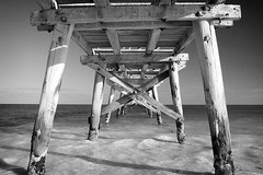 to the sea (liam.jon_d) Tags: wood blackandwhite bw art heritage history blancoynegro monochrome landscape coast blackwhite wooden nationalpark noiretblanc timber piers jetty australian australia symmetry historic coastal southernocean schwarzweiss pretoebranco  westernaustralia biancoenero auszug piles eucla blancinegre jetties abstrait marinepark  greataustralianbight extracto estratto worldwalkers billdoyle canong1powershot derelictstructures mytopforty
