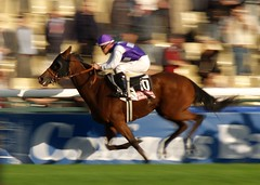 (Hughes Lglise-Bataille) Tags: horse motion paris france color sports topf25 speed olympus 2006 racing jockey panning arcdetriomphe longchamp e500 topv1000 topv2000