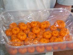 marzipan pumpkins (padmaclynne) Tags: pumpkins marzipan