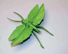 flying katydid (Chosetec) Tags: art bug insect origami katydid robertlang origamichallenge origamichallenge1