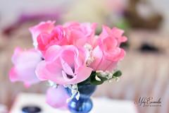 Roses (melyescamilla1) Tags: flowers decor pink rosa roses decoracion pretty lovely beautiful soft softcolor pastel pastels pastelcolors colorful lens lente50mm 50mm18 bokeh nikon nikond3400 nikonista love lovelycolor floral flores