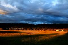 fox glacier sunset (rina sjardin-thompson photography) Tags: foxglacier farming light landscape southisland southwestland sunset goldenhour westcoast westland weather farmland cloud nz nature rural rinasjardinthompson