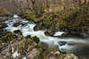 Aira Beck (Future-Echoes) Tags: 5star 2018 airabeck airaforce cumbria flow flowing longexposure river rock thelakedistrict trees water