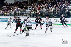 Nuernberg Ice Tigers - Straubing Tigers