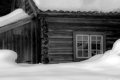 Fine art (steffos1986) Tags: nature blackwhite blackandwhite nikond800 tamron60mmf2macro snow whi ice winter old house outside contrast wood fineart art