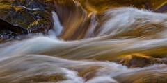Merced River Detail (ER Post) Tags: californiafebruary2018 mercedriver nationalpark park trips usanationalpark yosemitenationalpark california unitedstates us