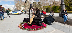 Street musician (Lucien Schilling) Tags: madrid comunidaddemadrid spain es street musician harpe black knight