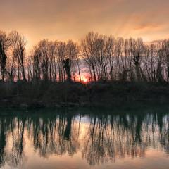 My snakey mirror (Robyn Hooz (away)) Tags: villadelconte padova padovainfoto alberi sponde fiume river brenta sunset sun sole disco mirror