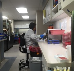 Our chilly lab (ddsiple) Tags: microbiology laboratory