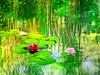 water lily pond (HocusFocusClick) Tags: waterlily pond plants flowers textured green yellow blue pink red reflections water leaves