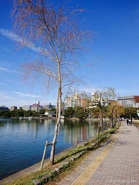 九州大濠公園-4318