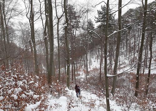 Winter 2018 Baden Umgebung