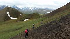 20170620_142641 (AlaskaGeo) Tags: 2017 denali hiking scenery
