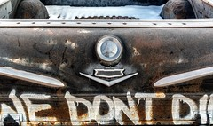 We Don't Die (rickhanger) Tags: vehicles chevrolet chevrolettruck elcamino chevroletelcamino automotive automobile auto truck pickuptruck pickup wedontdie rust rusty chrome chevy ornament insignia tailgate