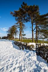 Winter into Spring (JKmedia) Tags: boultonphotography march 2018 winter spring snow ice weather landscape moor bluesky blue dartmoor devon