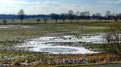 Ein wenig Schnee - A little bit of snow (antje whv) Tags: winter schnee eis ice felder fields