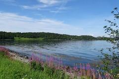 507. Norvège (@bodil) Tags: norway norvège norge noreg trondheim landscape paysage