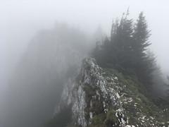 Alter ego (George Pancescu) Tags: iphone piatracraiului padinilefrumoase mountain nature natural outdoor trees ridge fog clouds romania landscape