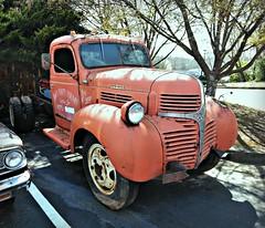 """Big Orange"" (Dave* Seven One) Tags: dodge mopar truck dodgetruck farmtruck rusty rust rot rotted broken used neglected decay decaying orange bigorange orangetruck project"