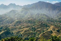 Mường Hoa Valley. (@see1st) Tags: vietnam sapa laocai sony sonya7s travel adventure explore nature landscape rice ricehike greencolors natgeoru nationalgeographic