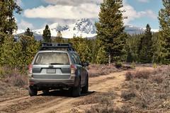 2012 Subaru Forester (softroadingthewest.com) Tags: sh forester subaru softroading dirtroad oregon cascades centraloregon nationalforest wilderness subaruforester