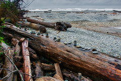 A Collection of Cairns (dougbank) Tags: trees cairns pacific washington landscape water ocean rocks waves