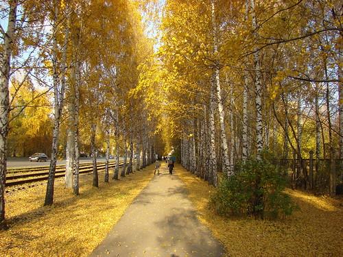 Аллея осенью 2 ©  ayampolsky