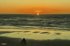 P2151413a-EditFAA (john.cote58) Tags: sanfrancisco california beach art city dog pet photography professional josephyvoncote interiordesign print outside outdoors winter february mood sunset dawn ocean pacific color