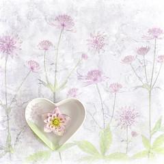 Spring Hellebore (Jacky Parker Photography) Tags: hellebore lentenrose flower pinkflower stilllife flatlay heartshapedbowl floatingflower floral floralart fineart squareorientation selectivefocus focusonforeground textured flowerphotography