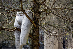 Disasters of war (Explored 17/04/2018) (zolaczakl) Tags: bristol stokescroftscenes stokescroft mannequin trees uk nikond7100 nikonafsnikkor24120mmf4gedvrlens photographybyjeremyfennell england
