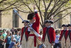 2018 National Cherry Blossom Parade  (457) U.S. Army Old  Guard (smata2) Tags: military washingtondc dc nationscapital cherryblossomfestival cherryblossomfestivalparade parade oldguard fifeanddrumcorps