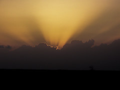 Lone Tree Sunset.... (Diana Kae) Tags: sunset lone tree lonetree golden missouri nature landscape dianakae dianawhite dianaobryan sunrays clouds