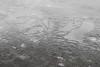 11-24-2017 Ice (cnaturetoday) Tags: mn cameron day cnature2day cnaturetoday nature canon eos 7d minnesota dakota county wildlife lz cz farmington waterway cold ice lake pond crack cracking icy frozen
