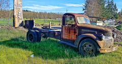 Farming Veteran (creepingvinesimages) Tags: htt truck farm rust outdoors green blue antique washingtoncounty oregon pse14 topaz