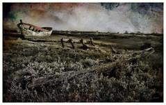 En attendant la marée... (*Jost49* (±Off)) Tags: france paysdelaloire noirmoutier cimetièremarin marinecemetery bateau boat épave wreck texture canoneos6dmkii canonef1635f4lisusm