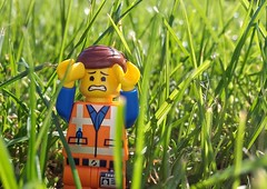 [ l o s t ] ([BigGarlicBullet]) Tags: lego minifigs legomovie toyphotography toys emmet green grass