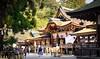 Omiwa jinja (hswrrswa7) Tags: omiwashrine nara japan