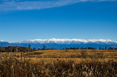 Mountains of Abkhazia (ivan_volchek) Tags: landscape sky nature outdoors field tree travel visiting agriculture fall sunset mountain dawn rural light panoramic grass snow mountains