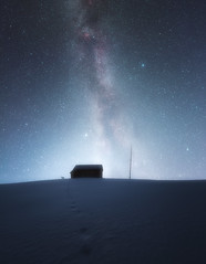 A lost friend (petrisalonen) Tags: night nightphotography fox astrophotography winter finland nature snow space stars milkyway atmosphere landscape blue light frost tree freezing