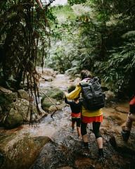 Rainy rainforest hiking in southern Japan (Ippei & Janine Naoi) Tags: ishigaki island okinawa japan japanese holiday tropical outdoors nature tropics winter february pacific yaeyamaislands 八重山諸島 nationalpark 西表石垣国立公園 jungle rainforest hiking adventure trekking stream