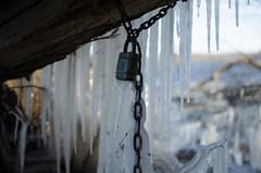 DSC_0042.jpg (krst3nmllr) Tags: altkünkendorf buchenwald grumsin winter