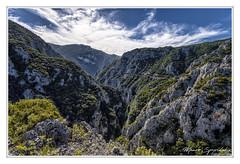 Asopos Gorge - το φαράγγι του Ασωπού (MάNoS) Tags: saariysqualitypictures landscape mountain mountainside sky forest tree wood manosspyridakis mάnos nikon d300 gorge canyon rocks