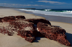 Beach with red rock (jack eastlake) Tags: pambula eden nsw coast south far park national boyd ben
