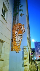 541 Paris en Février 2018 - un tigre rue du Retrait (paspog) Tags: paris france février februar february 2018 tigre tiger rueduretrait