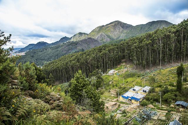 Nodo Cerros Orientales