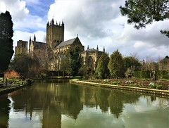 Bishop's Palace Gardens! (springblossom3) Tags: wells cathedral somerset tourism reflections garden england english history nature